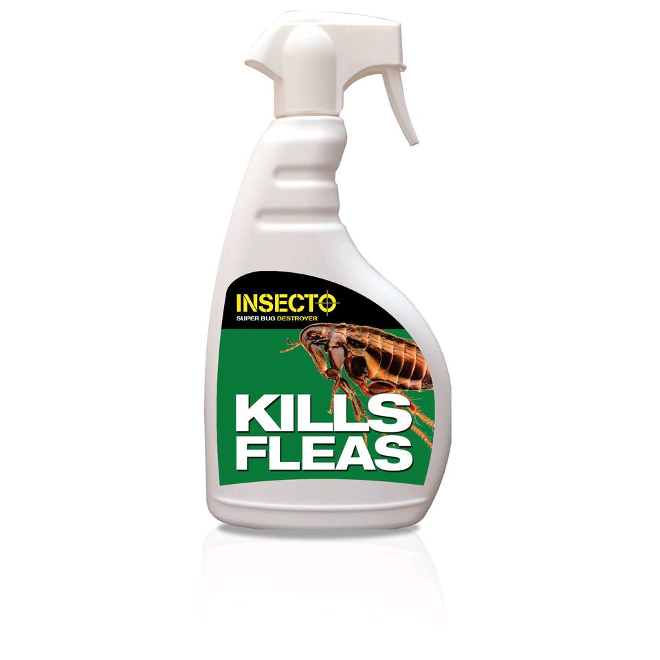 how long does pest control spray last